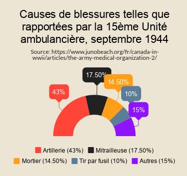 Infographic of Wounds - Français